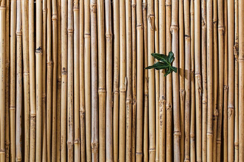 Cercas y vallas de bambú